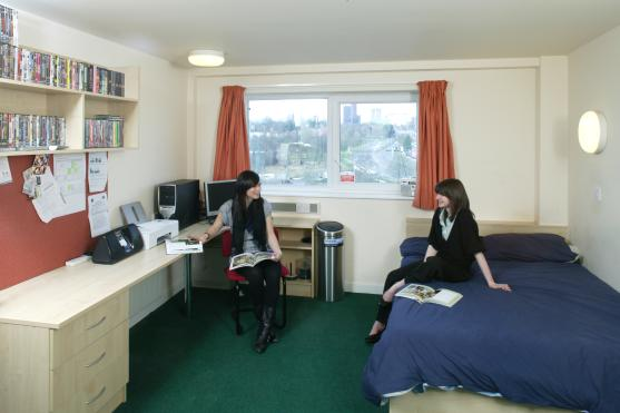 Why Student Houses Prove More Popular Than Student Halls