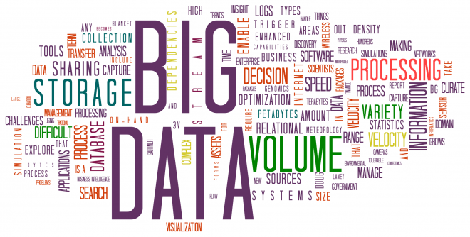 How Can You Become A Data Management Professional?