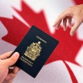 Best Consultant for Canada Immigration