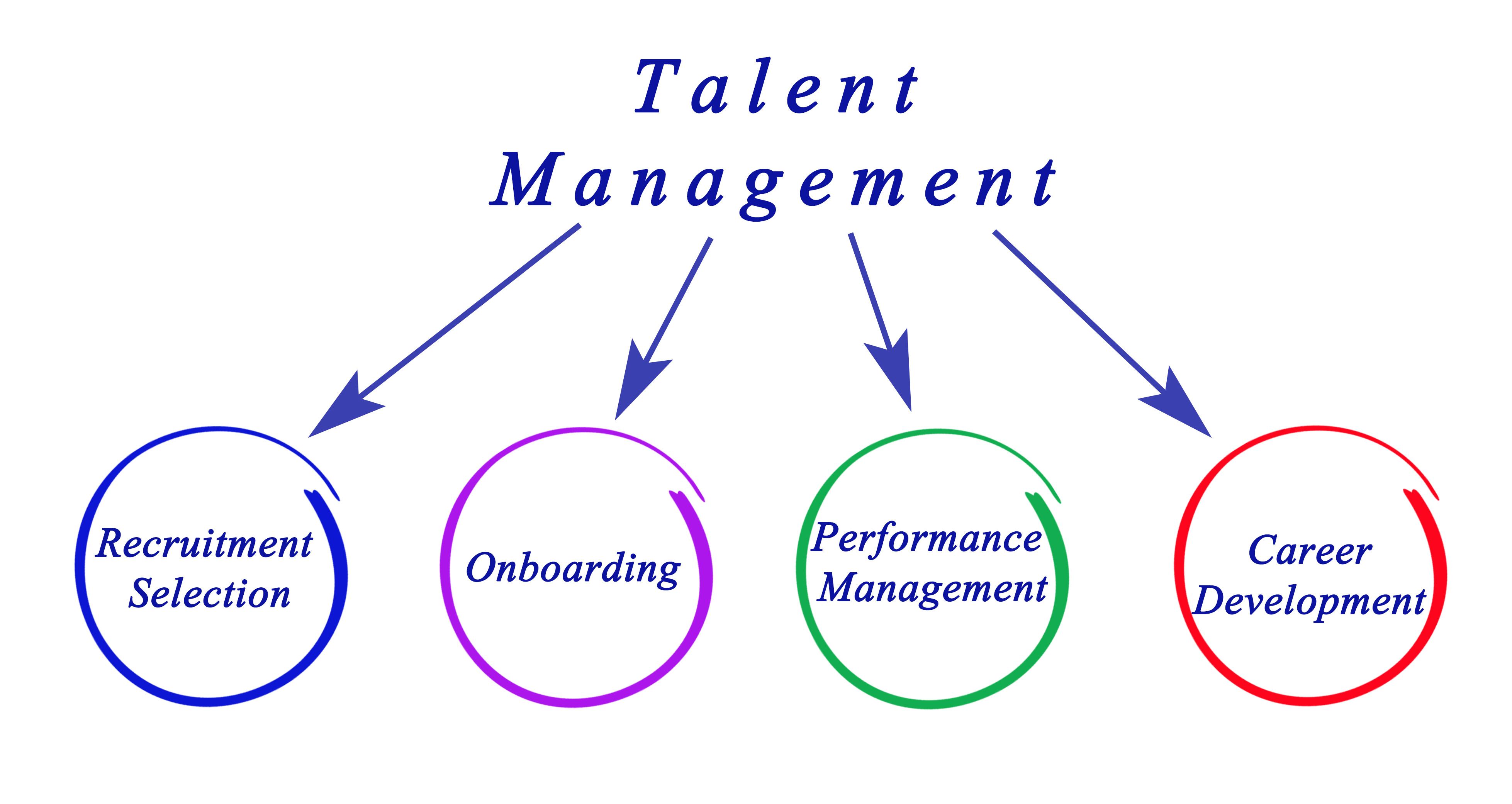 talent management dissertation