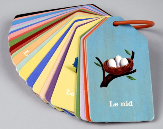 Guide To Using French Flash Card For Effective Learning