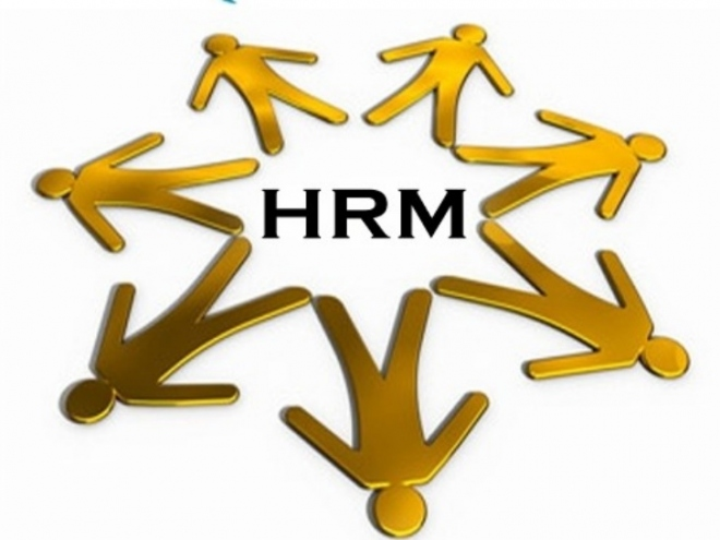 'Introduction To Human Resources' Courses